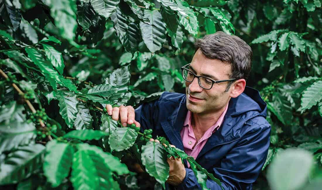Emilio looking at the coffee trees