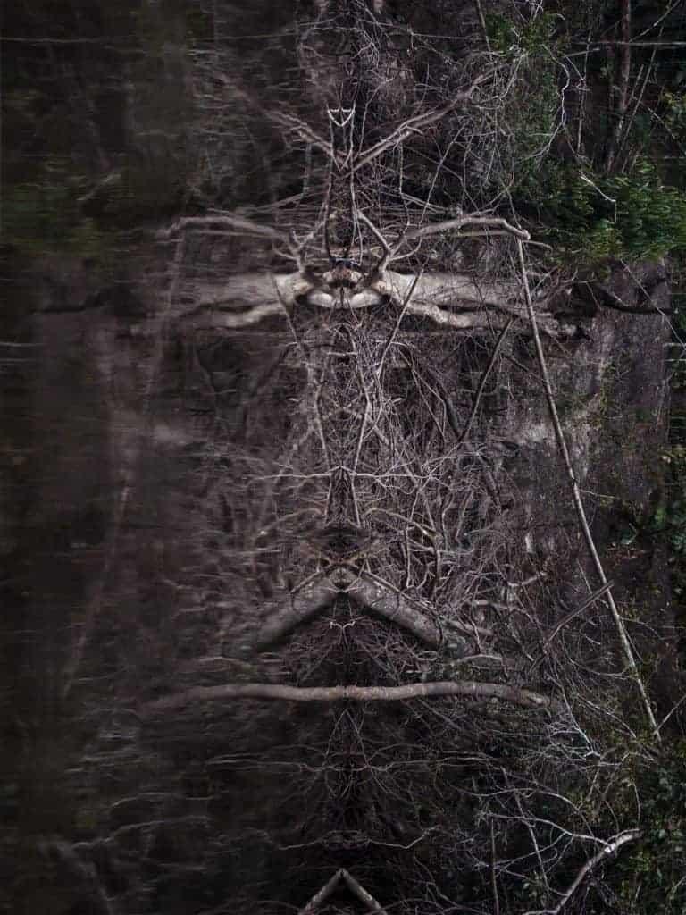 Tinko Czetwertynski artwork titled, Spirits of Nature 3